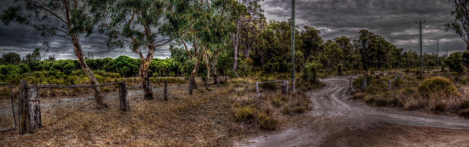 Autumn in Australia #2