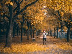 autumn in casselfornia