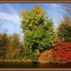 Autumn in Hungerford