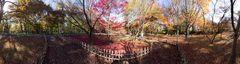 Autumn In Japan 2012-25