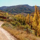 Autumn in Spain