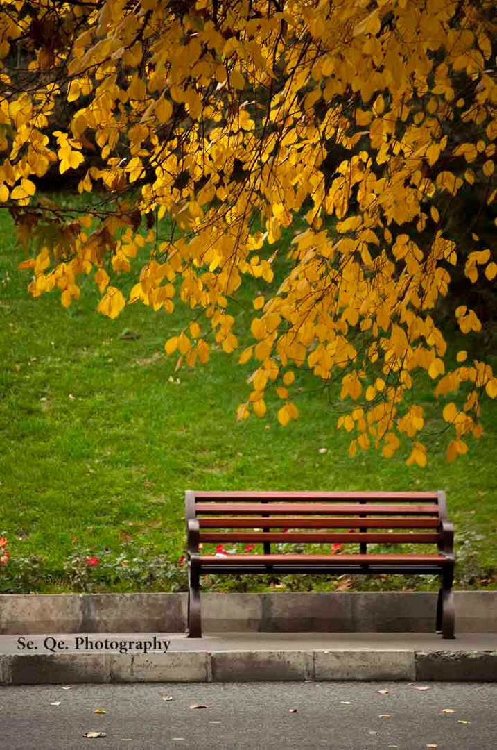 Autumn in Tehran