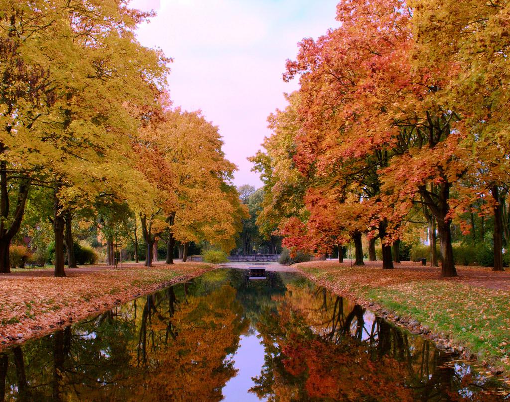Autumn in the mirror