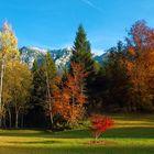 Autumn in the Val di Sella