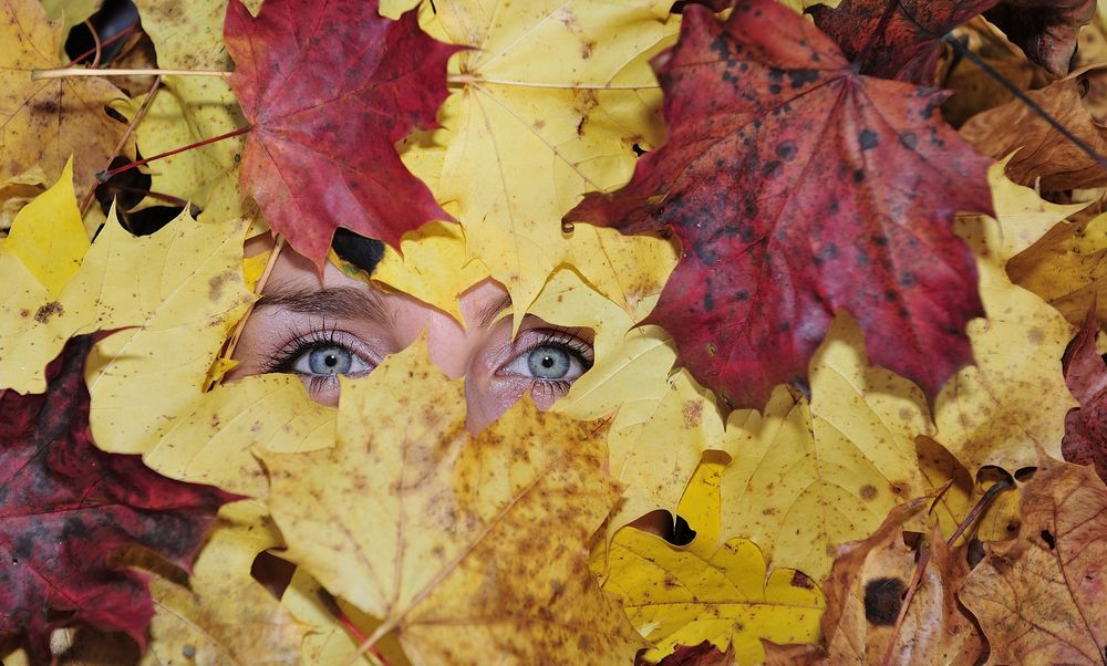 Autumn is watching you