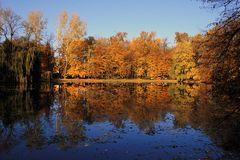 ~ autumn light ~