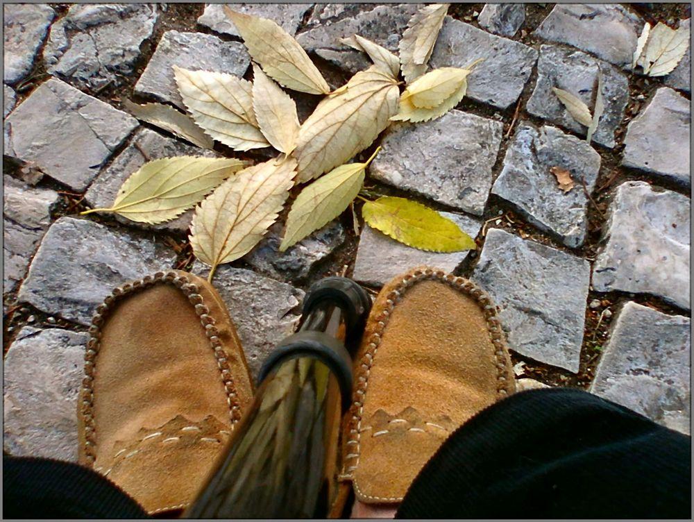 Autumn of lifes