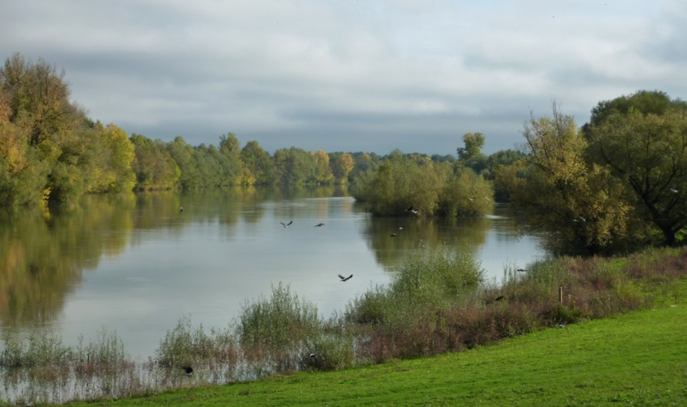 Autumn on the River (3)