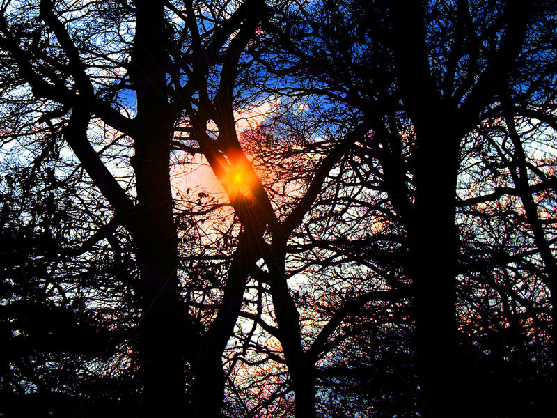 Autumn-Sunrise