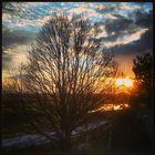 Autumn Sunset in Winter