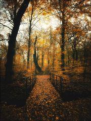 autumn time 2