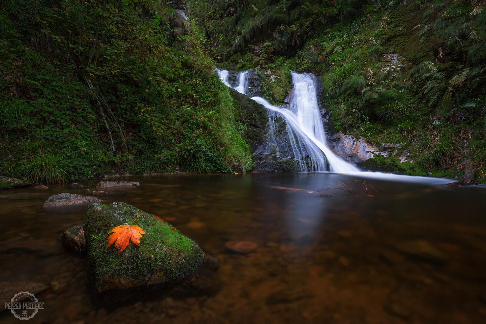 Autumn Wasserfall