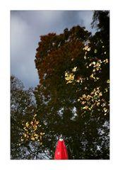 Autumn · Water II