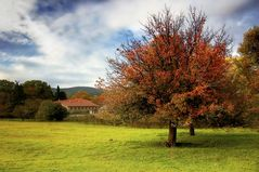 Autumnal Lanscape/ Herbstlandschaft