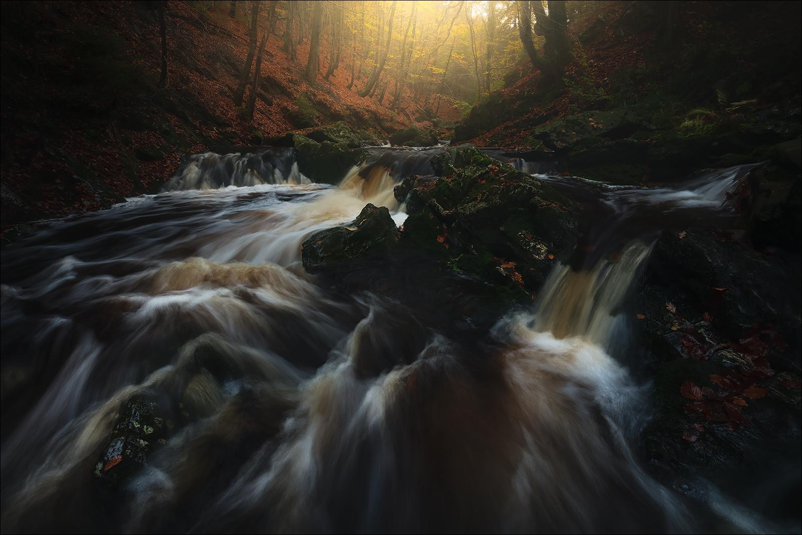 [ ... autumnal stream ]