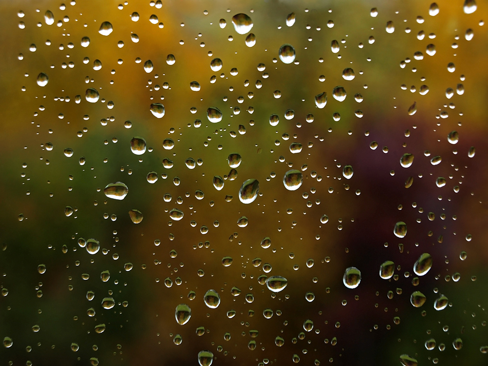 autumnal teardrops