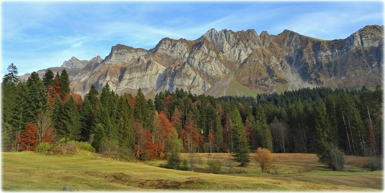 """autumn,along the road"""