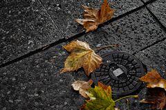 autumn.poem