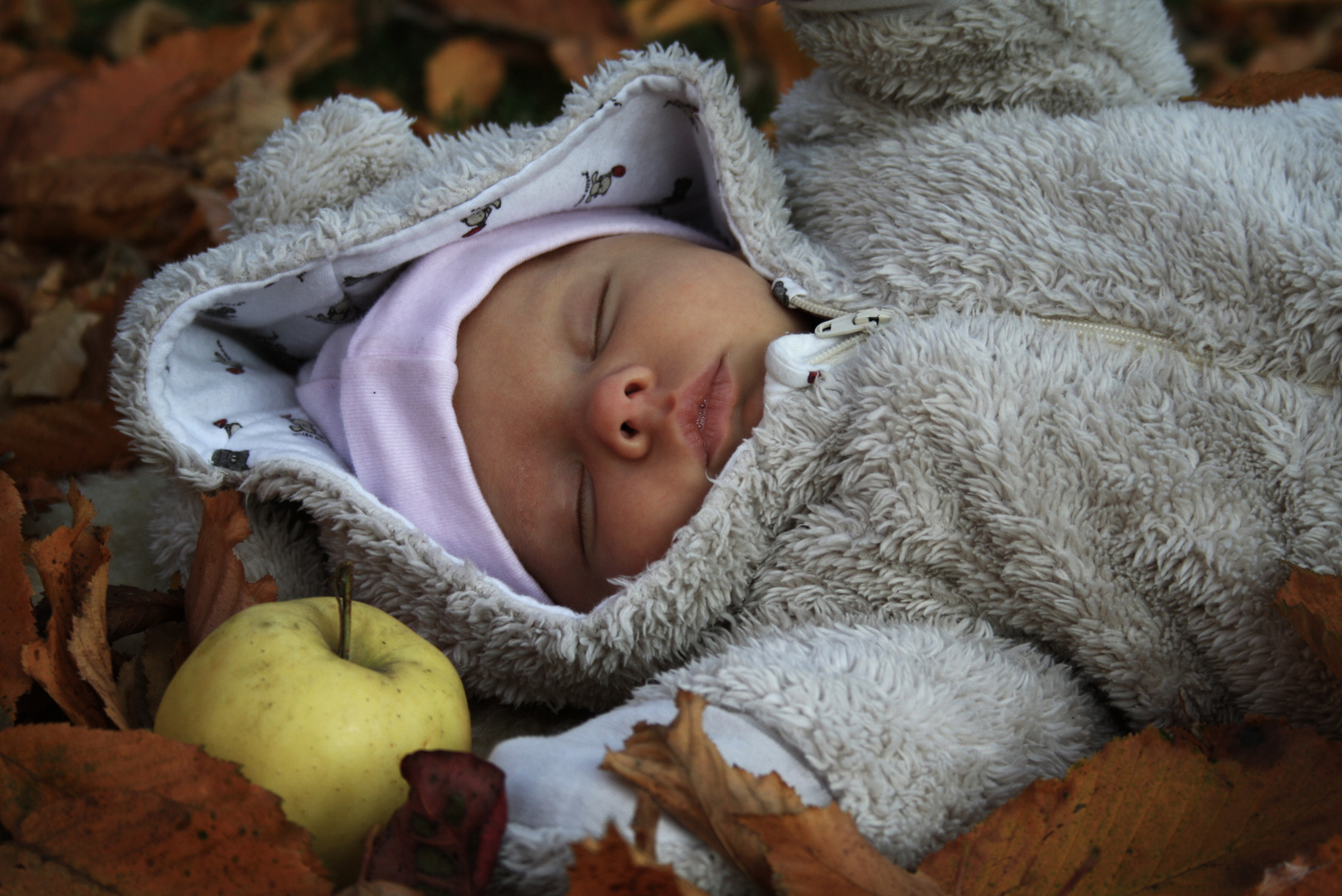 autumn's sweetest song
