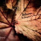 .autumn's the time.