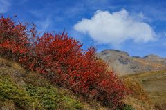 autunno in quota