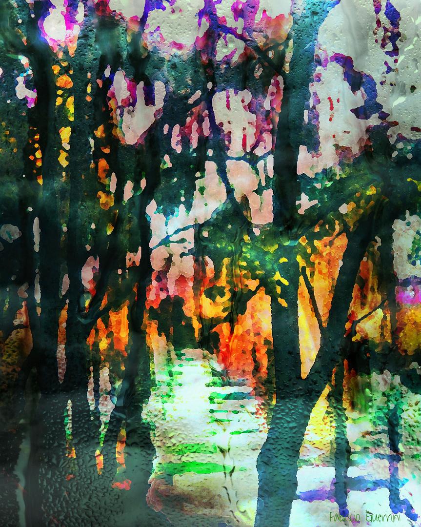 Autunno nello stagno