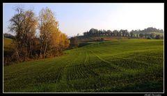 ..autunno..in collina..
