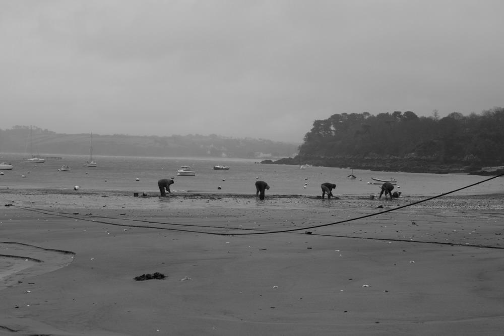 Avant le Pêche - Port du Rosmeur (29)