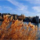 Avignon au fil du Rhône