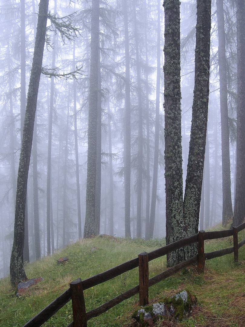 avvolgo e nascondo...sono la nebbia.