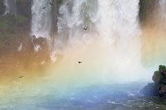 Avvoltoi nell'arcobaleno