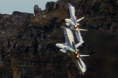 Axalp 09: heizende Hornets