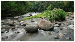 Ayung River 2