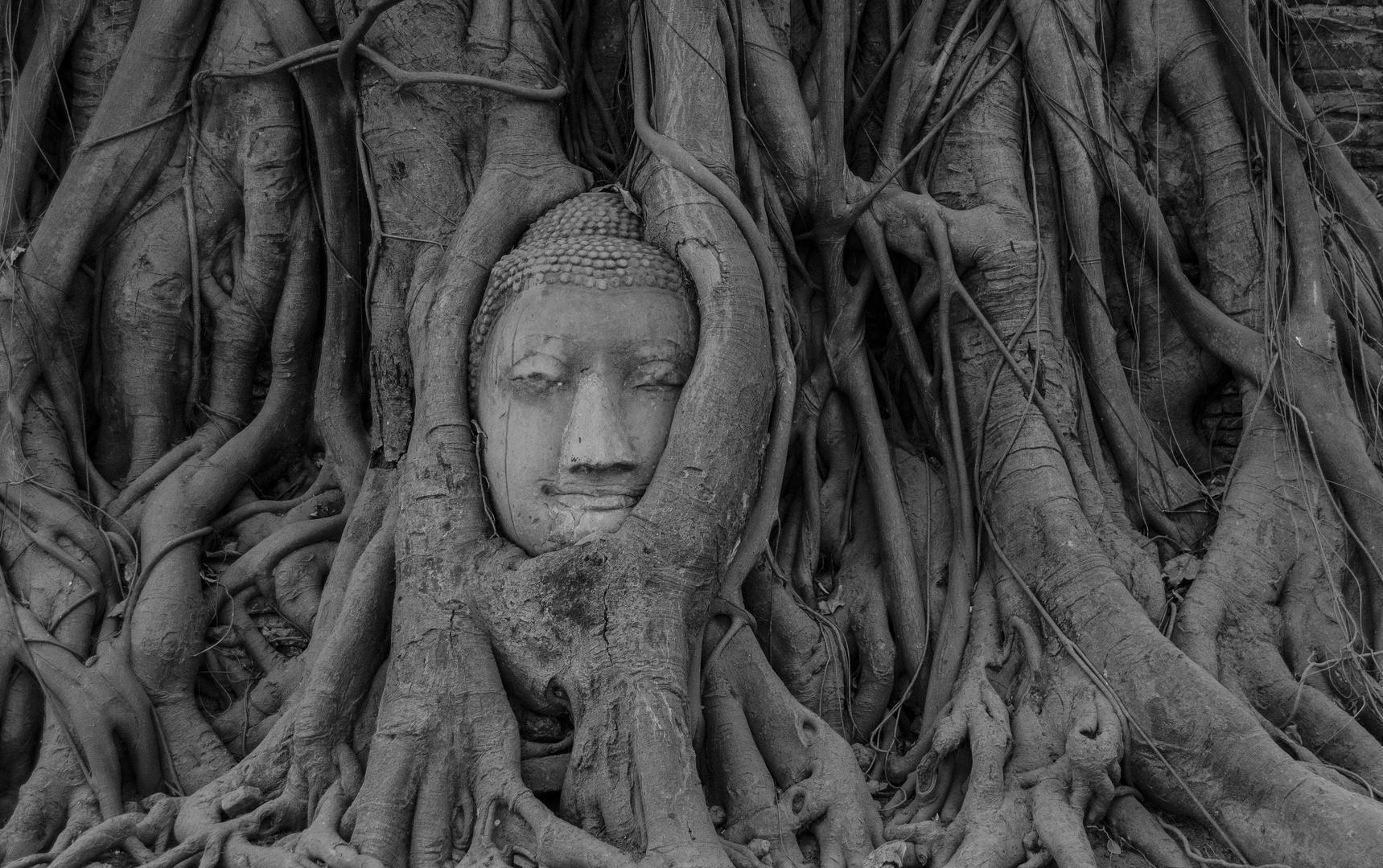 Ayutthayah
