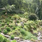 Azoren: 4 Klimazonen an einem Hang, 7 auf zwei innert 10 km