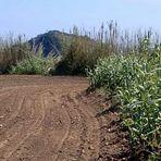 Azoren: wie unbewohnte  Insel vor unbewohnte  insel zu verkaufen