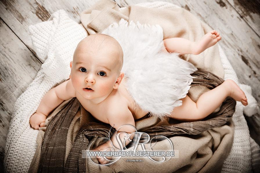 baby alexander 6 monate babyfotograf stuttgart foto bild kinder babies stuttgart. Black Bedroom Furniture Sets. Home Design Ideas