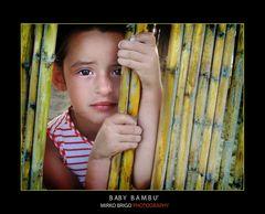 Baby Bambu'