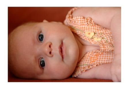 baby by david waldvogel