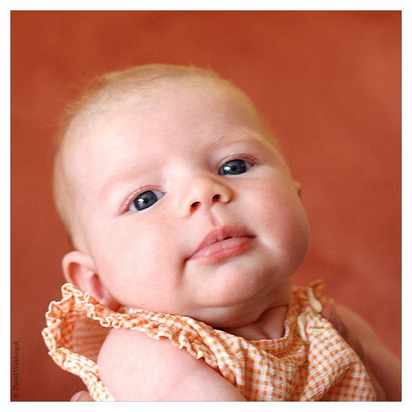 Baby by David Waldvogel II