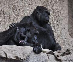 Baby, Mutti und Oma