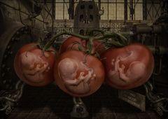 Babygenerator