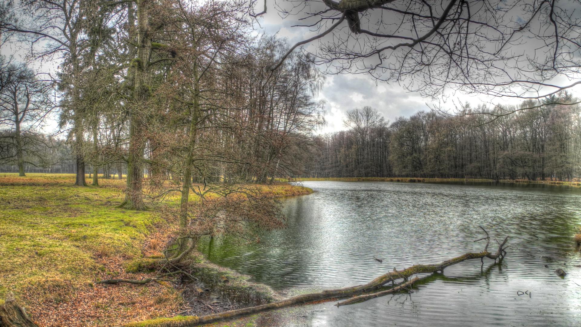 Bach im Münsterland