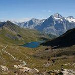 Bachalpsee mit Wetterhorn (3.701 m)