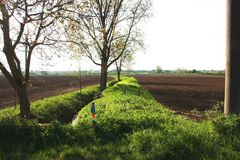 Bachlandschaft mit Maisfeldern