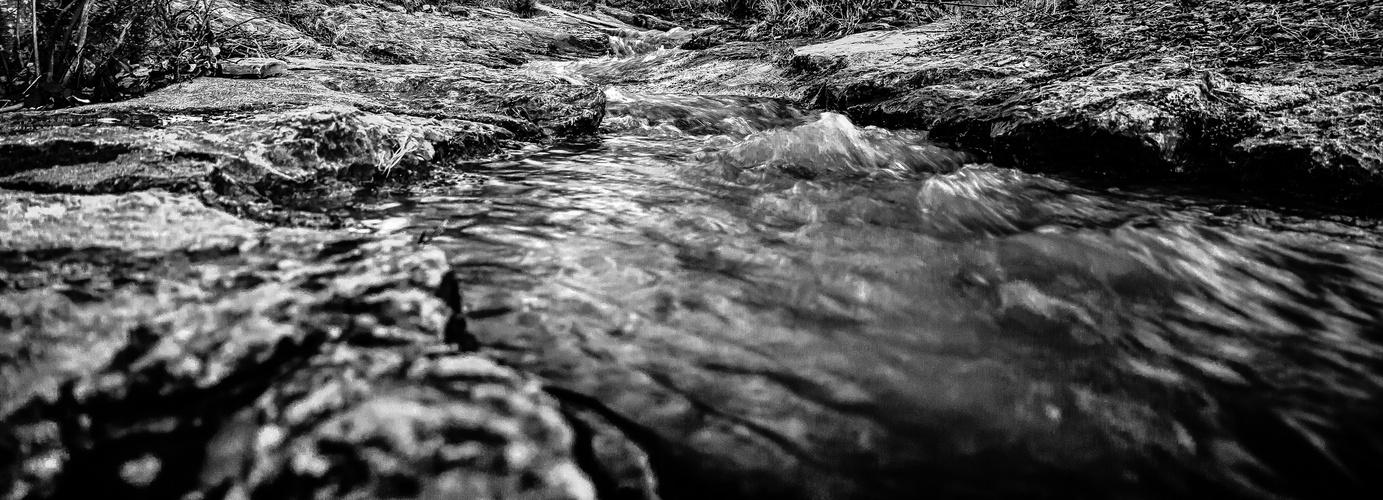 Bachlauf der Natur
