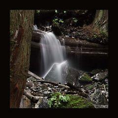 Bachlauf im Bridal Falls Provincial Park