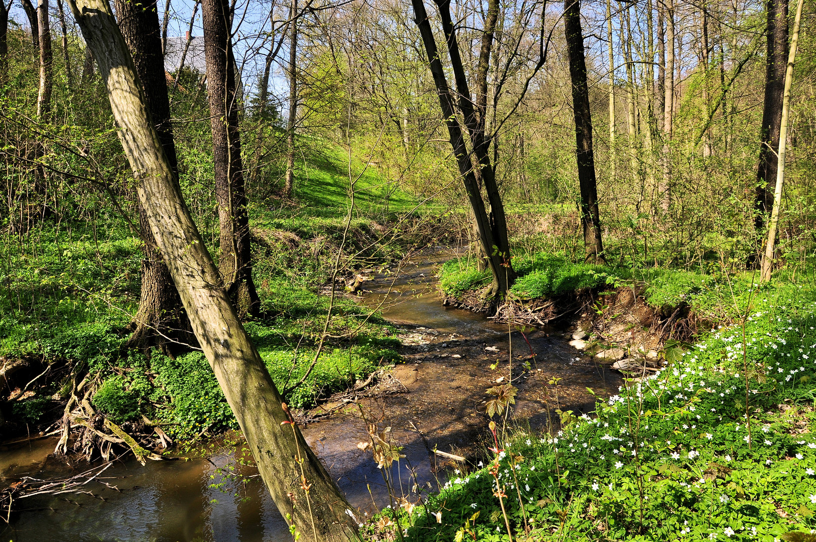 Bachlauf im Grünfelderpark