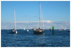 Back from a Sail - an Eastport Moment No. 5