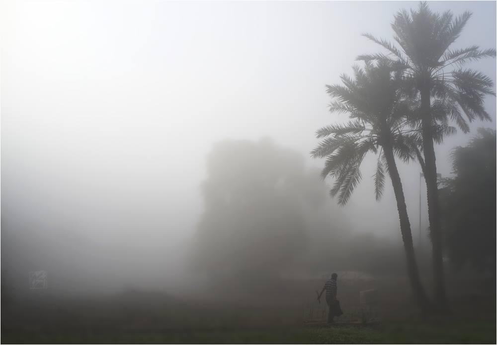 Back from fog